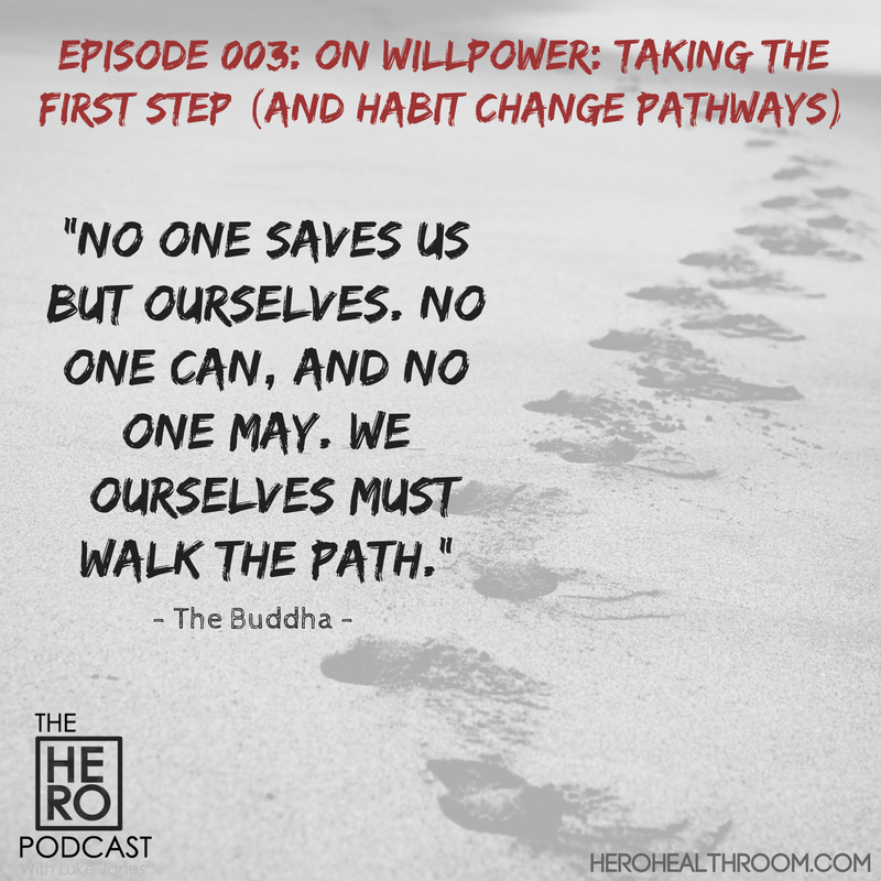 003 | On Willpower: Taking the First Step (And Habit Change Pathways)